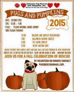 Pugs & Pumpkins 2015. WOOT!
